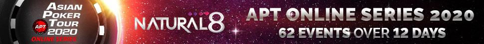 APT online slim banner