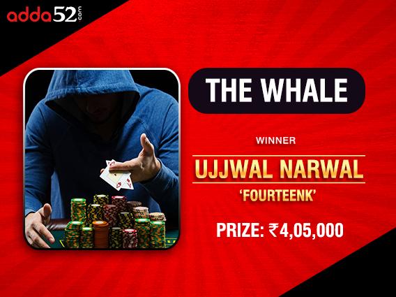 Ujjwal Narwal