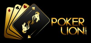 Exclusive Interview with Poker Lion's Navneet Makharia 3
