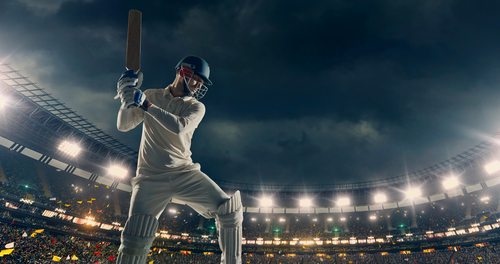 How to Play Professional Cricket