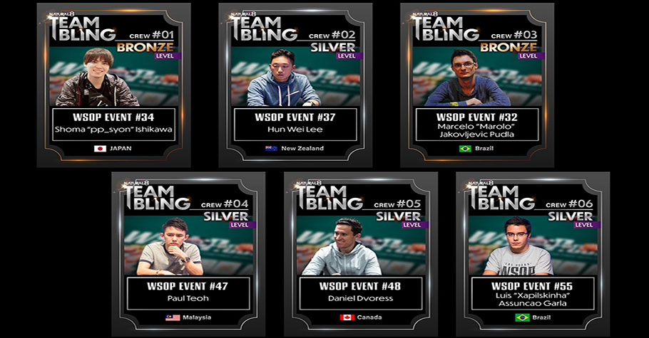 6 WSOP Online Bracelet Winners Receive Natural8 Sponsorships