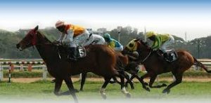 Turf Club authorities gain approval to resume horse racing