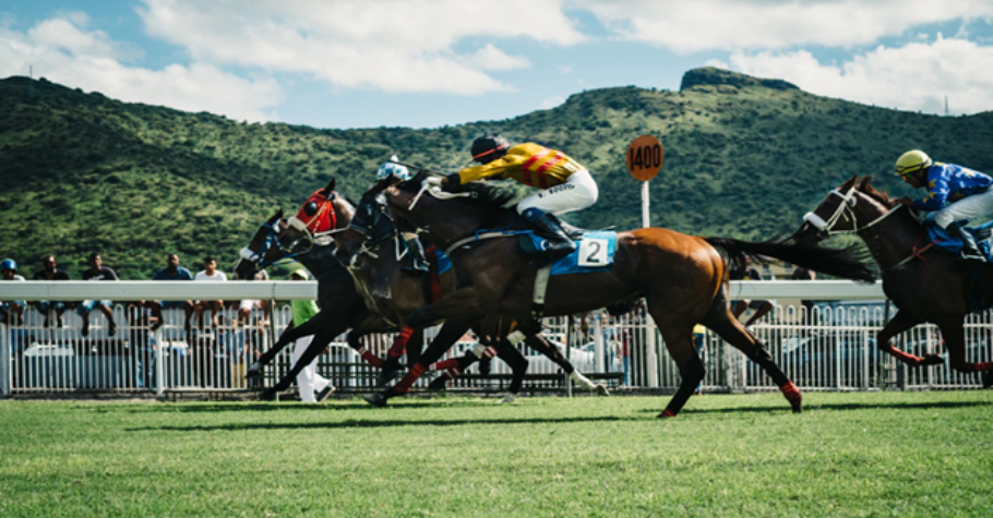 Horse Racing: 5 Australian Racehorses You Should Bet On