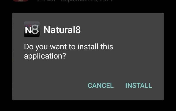 How To Download Natural8?